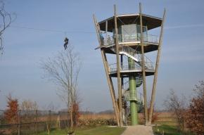 Steeds meer uitkijktorens in Kempische en Belgischenatuur