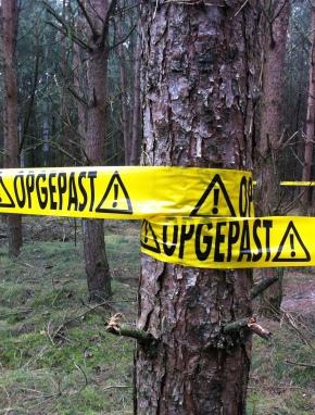 Crime Scene Investigation?